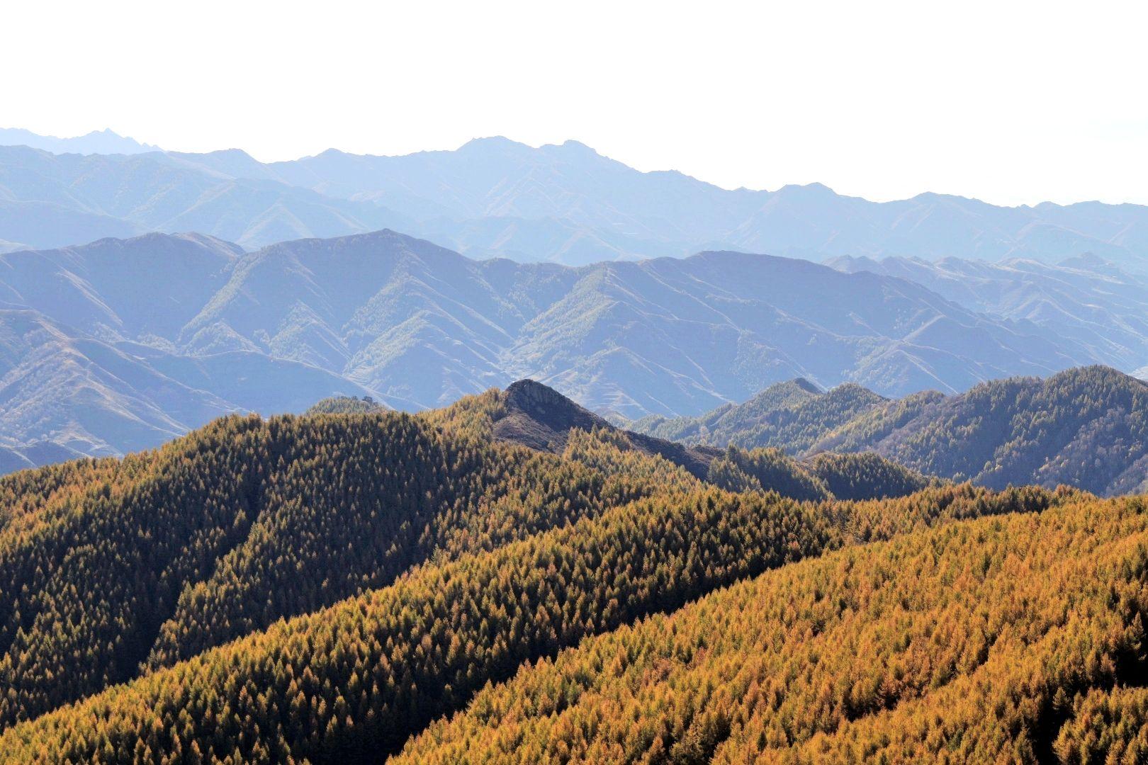 南与山西省阳高,天镇县接壤,西与丰镇市相邻,是晋,冀,蒙三省(区)交界