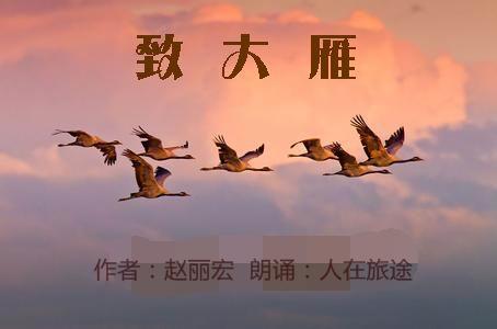 秋天大雁风景 片
