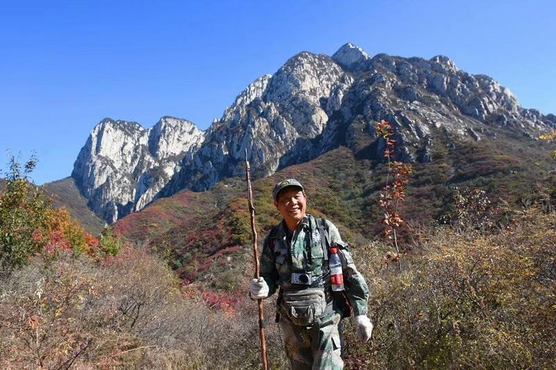 大三皇穿越少林寺因果寨环线手游攻略第六关图片